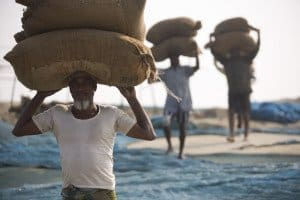 farmers carrying food items