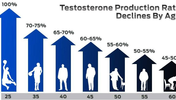 new-research-low-testosterone-production-rate