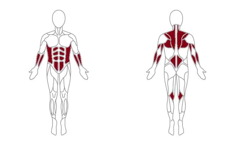 secondory muscles affected by burpee