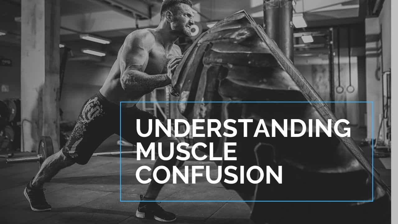 understanding muscle confusion