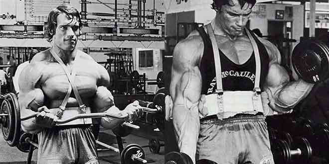 arnold curling with arm blaster